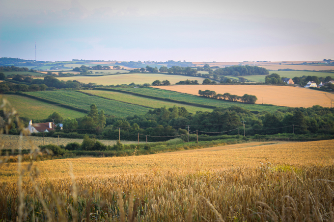 Devon Field|thefoodiesway.co.uk