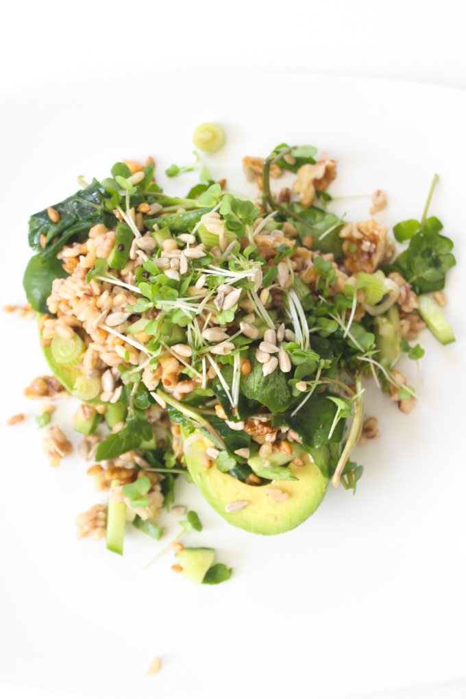 Avocado, Spelt and Watercress Salad + Clean Eating - The ...